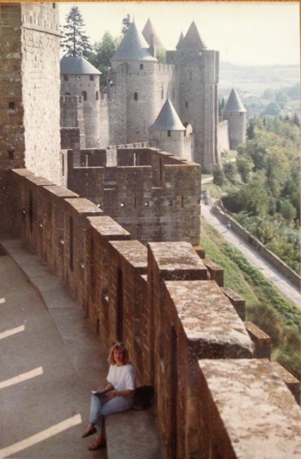 Deb Carcassonne cropped